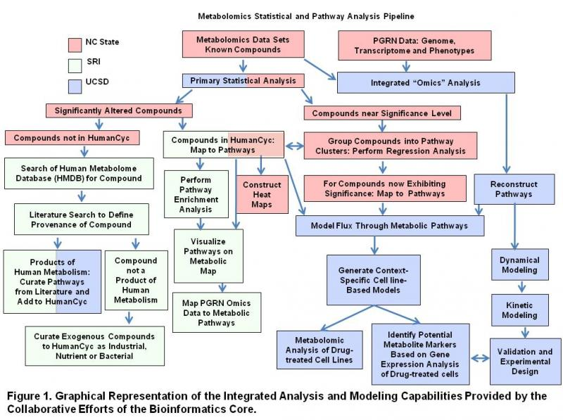 Metabolomics Statistical and Pathway Analysis Pipeline