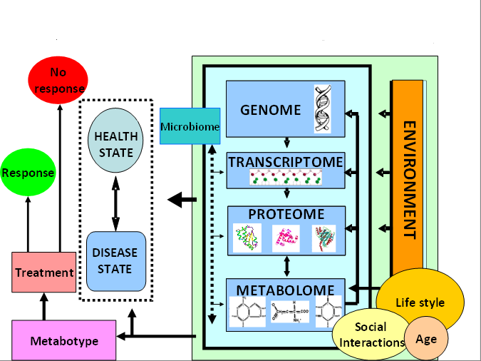 Metabolomics overview graphic